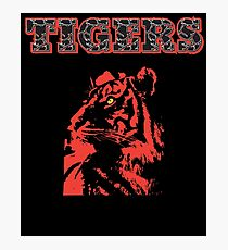 TIGERS Awesome animal for Men's Women's & Kids gifts artbyjfg Photographic Print