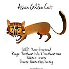 Asian Golden Cat by rohanchak