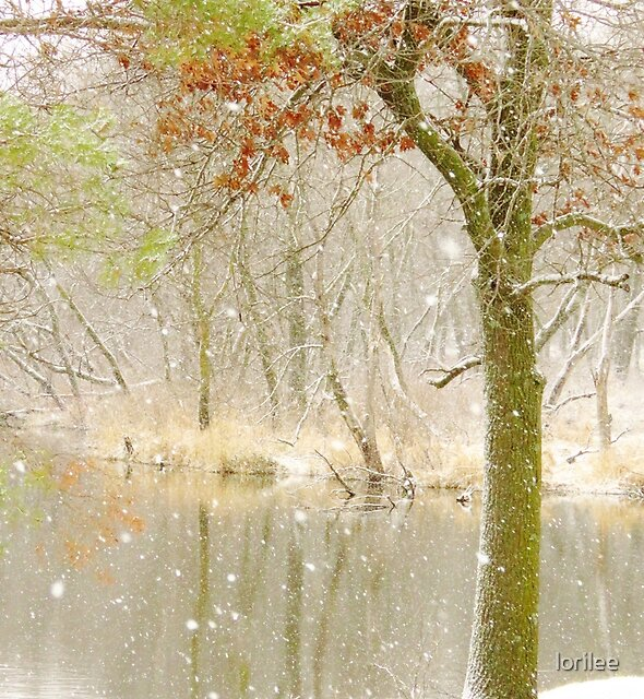 Softly Falls the Snow by lorilee