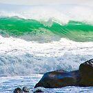 Jelly Sea by CrismanArt