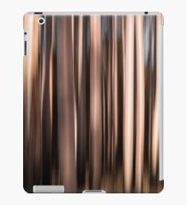 After the Fire Abstract #2 iPad Case/Skin