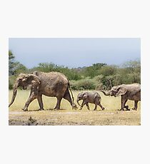 Mom's On Patrol Photographic Print