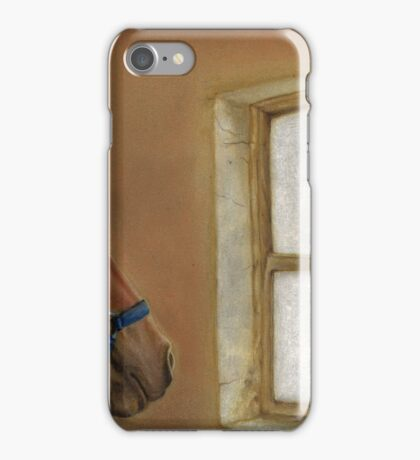 Reflections of Days Gone By iPhone Case/Skin
