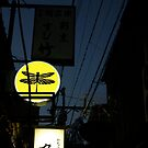 Dragonflies fly in Pontocho by turningjapanese