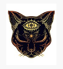 Egyptian Cat with Third Eye Open Photographic Print