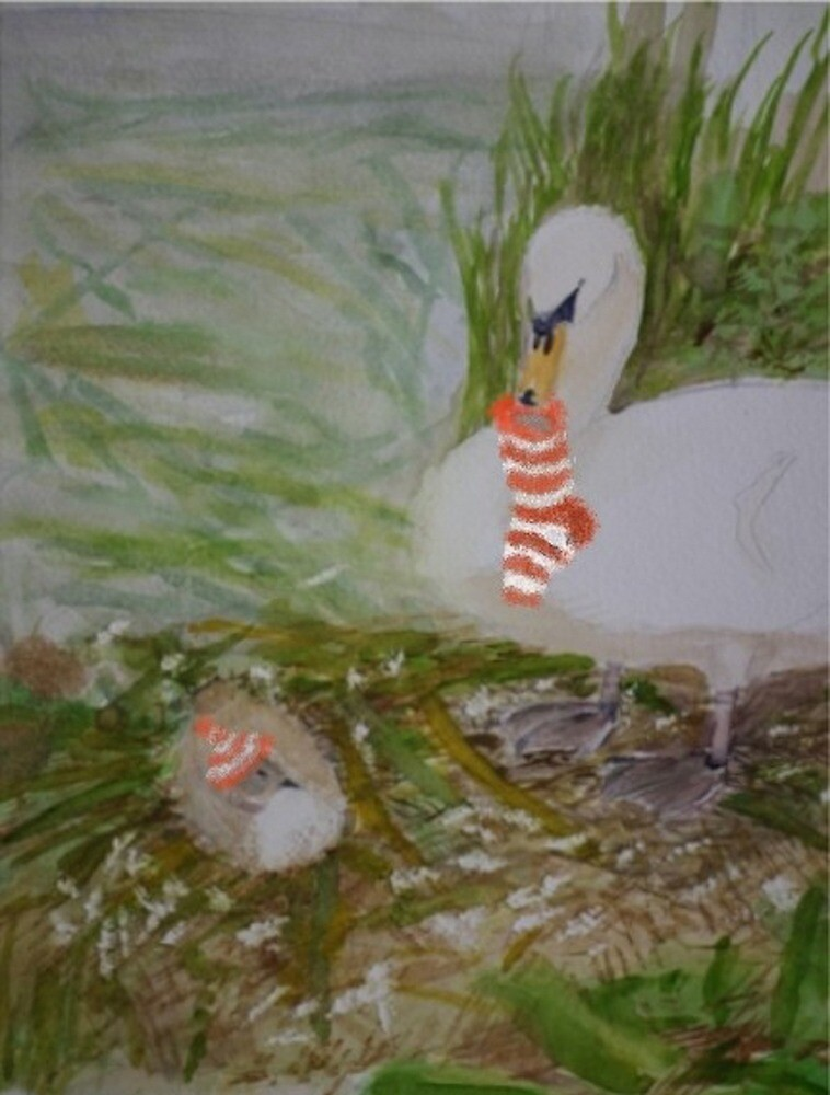 Swans getting ready for Christmas by Peter Lythgoe