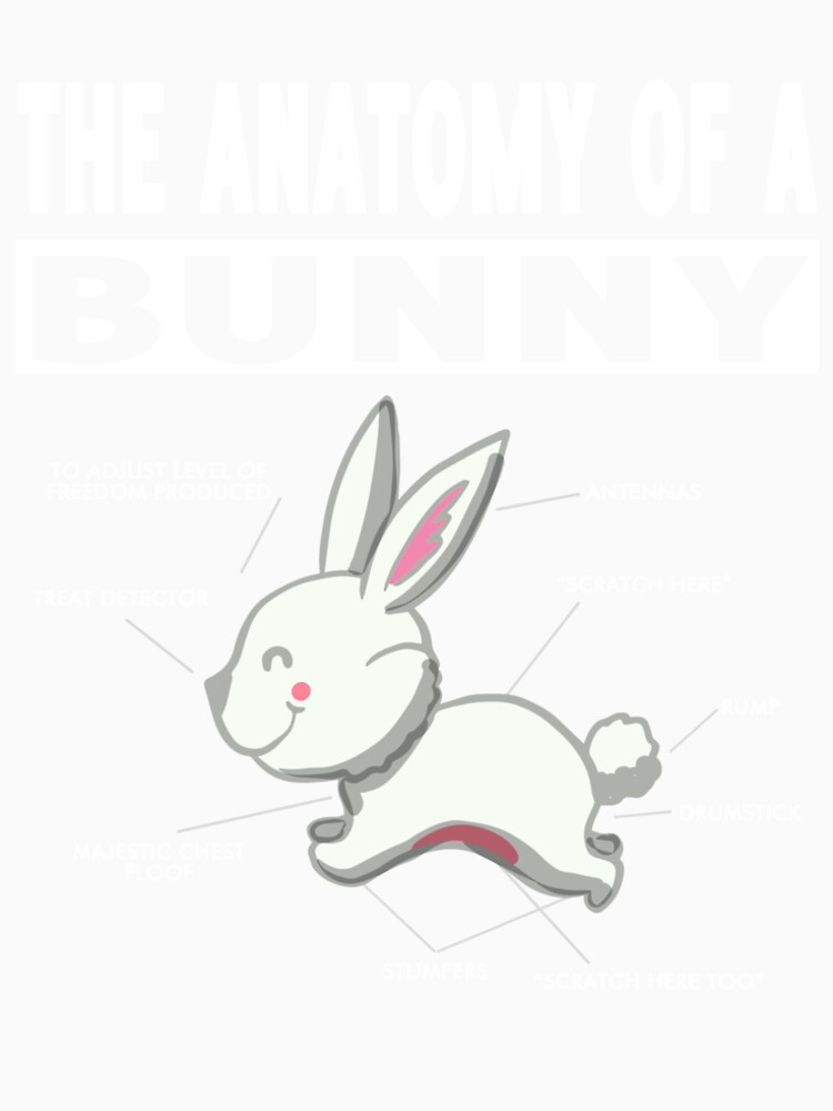 The anatomy of a bunny T-shirt\