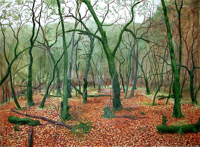 Mossy Trees by robunderwood