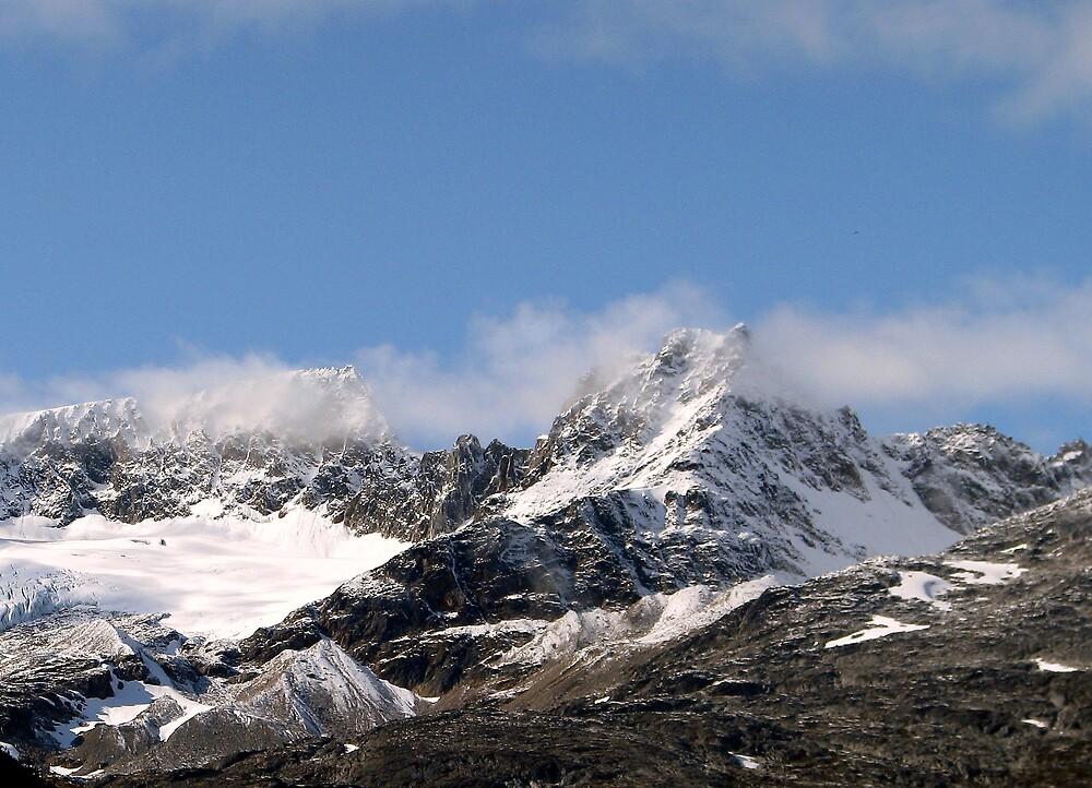 Alaskan Mountains by Robert Jenner