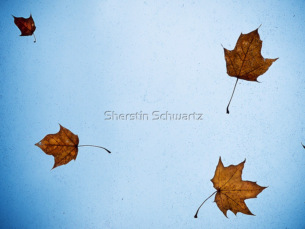 Still Falling.  by Sherstin Schwartz