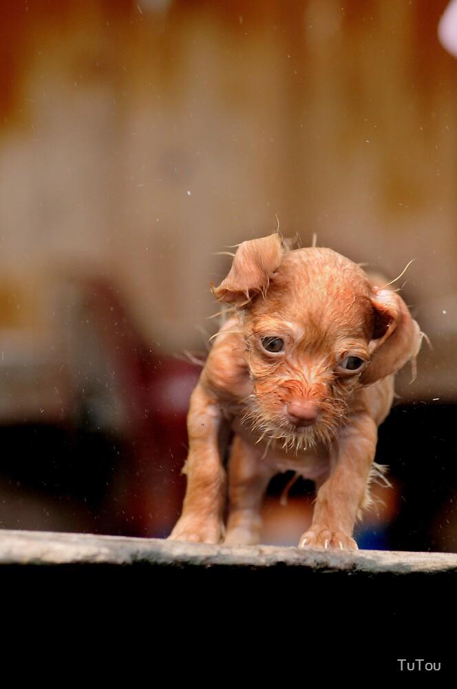 Bath time by TuTou