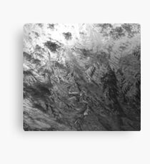 ice frost on wind shield Canvas Print