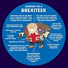 ANATOMY OF A BREXITEER - ITS COMPOSITION AND THOUGHT-PROCESSES by Clifford Hayes