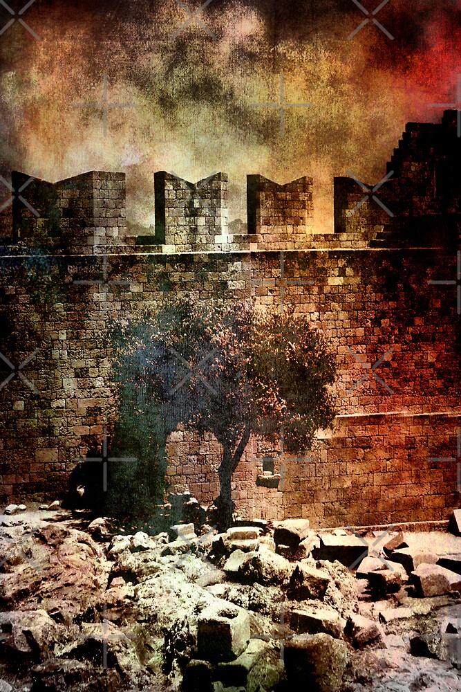 Walls of Jericho by Varinia   - Globalphotos