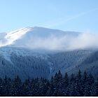 A Winter paradise by Ana Belaj