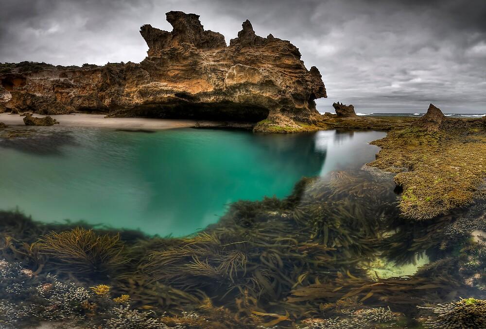 Paradisian Rock Pool by Robert Mullner