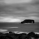 Dore Holm by Claire Walsh