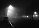 Winter abandonment by George Parapadakis ARPS (monocotylidono)