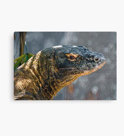 Komodo Monitor Canvas Print