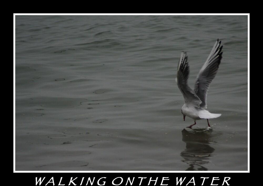 walking on the water by gingarasu