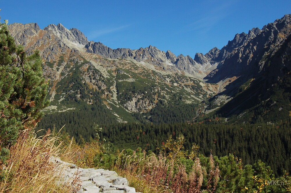Tatry Mountains 2 by MKCn