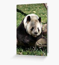 Tai Shan Greeting Card