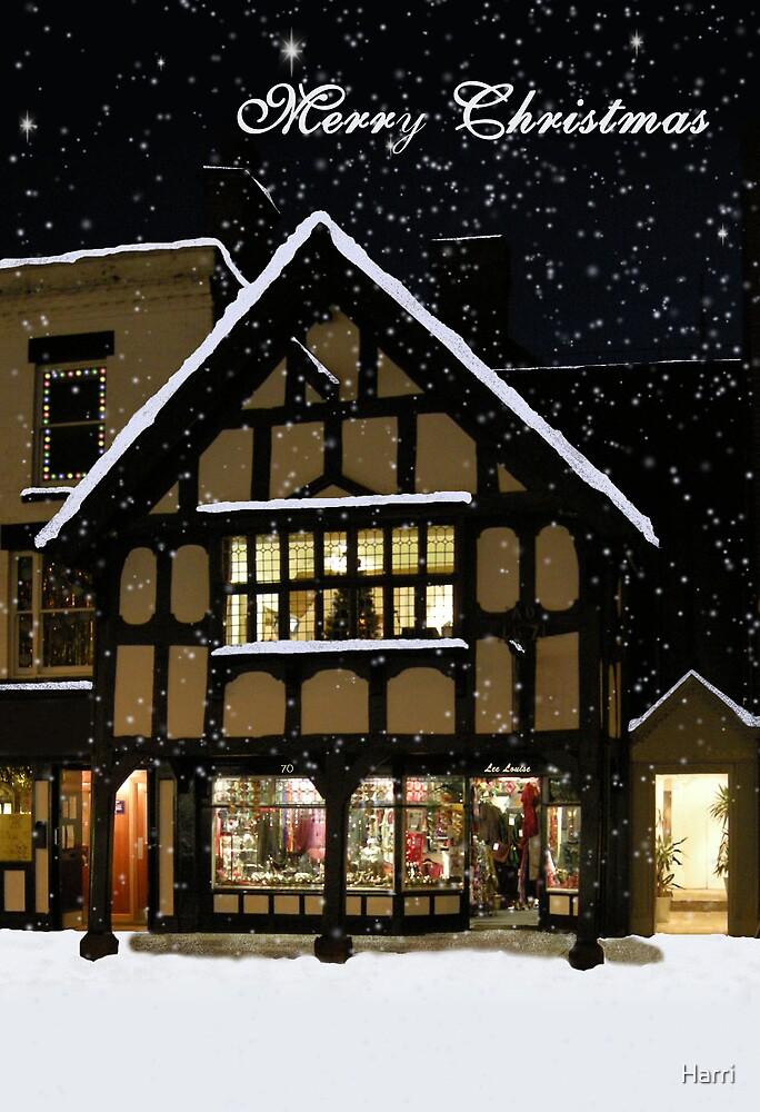 Merry Christmas by Harri