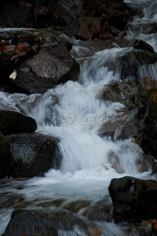The River Wild by Cheryl  Lunde