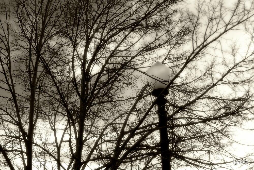 Encroaching Darkness by Lynn Stratton