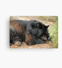 I'm Tired and Bored! Canvas Print