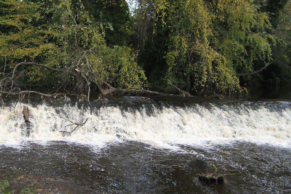 Weir on the Water of Leith by Yonmei