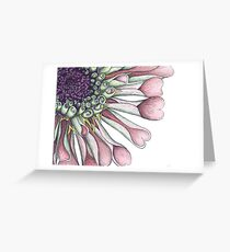 Salmon Zinnia Cropped & Close-up Botanical Illustration Greeting Card