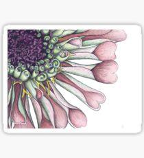 Salmon Zinnia Cropped & Close-up Botanical Illustration Sticker