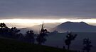 Yarra Glen Sun Rise  by Christine Wilson
