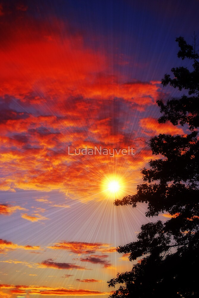 Sunrays by LudaNayvelt