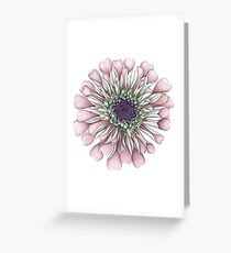Salmon Zinnia in Full Floral Splendor Greeting Card