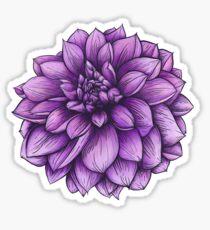 Thomas Edison Dahlia Botanical Illustration Sticker