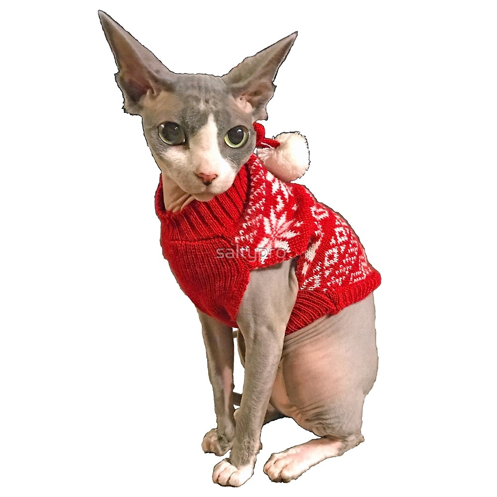 6e3cde8906 Sphynx cat ugly sweater