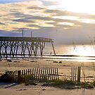 October 9, 2016 The Surfside Pier by Dawne Dunton
