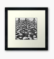 Escher Framed Print