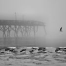 Surfside Beach In A Fog Black & White by Dawne Dunton