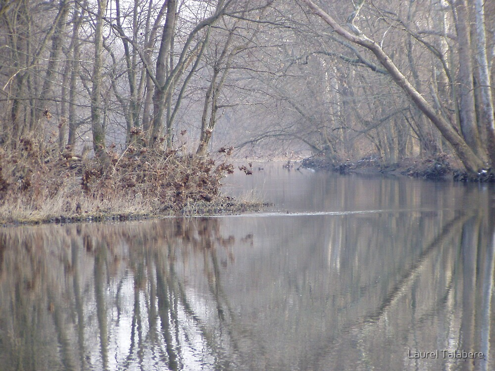 Winter Reflections Two by Laurel Talabere
