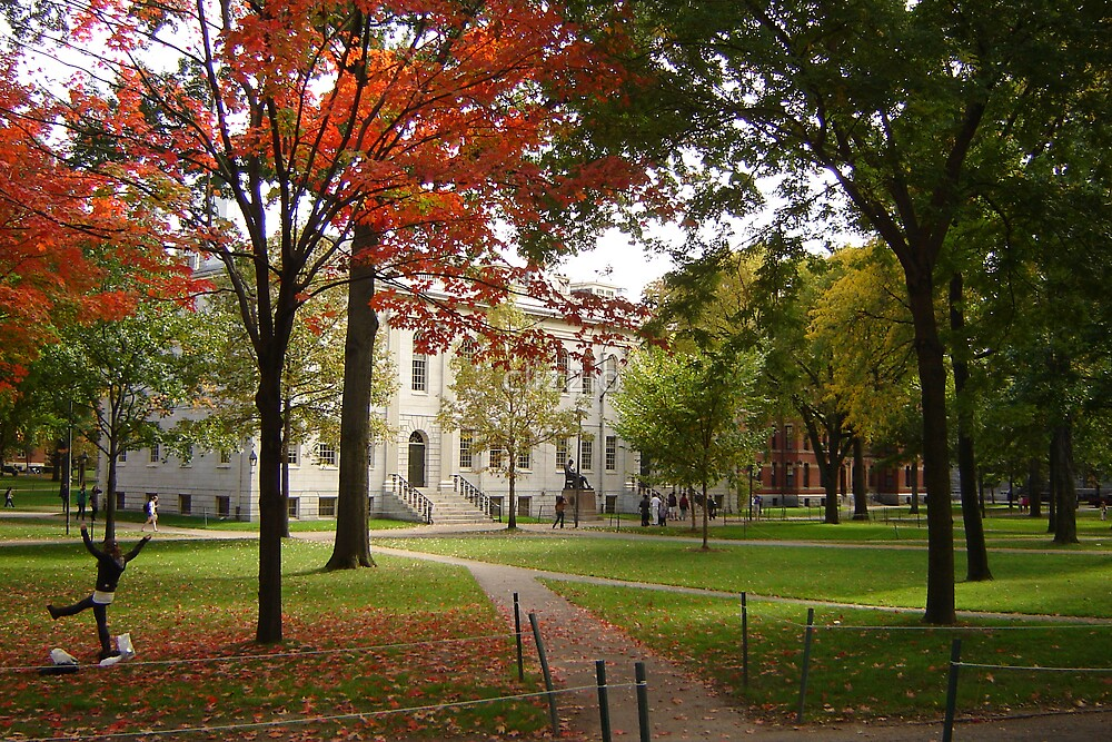 Harvard Campus in Fall by clizzio