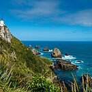 Nugget Point by Naomi Brooks