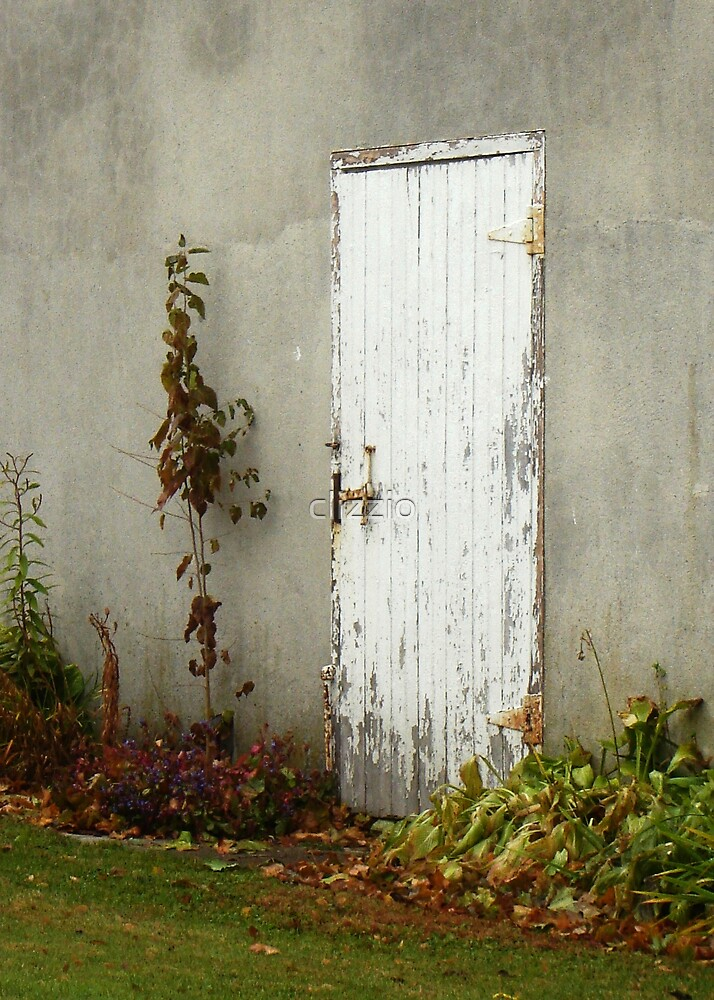 The Door in the Wall by clizzio