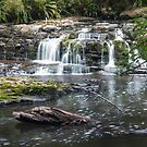 Catlins River waterfall by Naomi Brooks