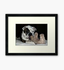 Moose & Bull Framed Print