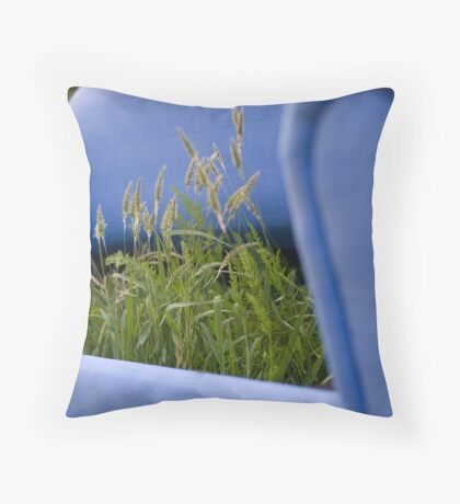 Remember the Couch Throw Pillow