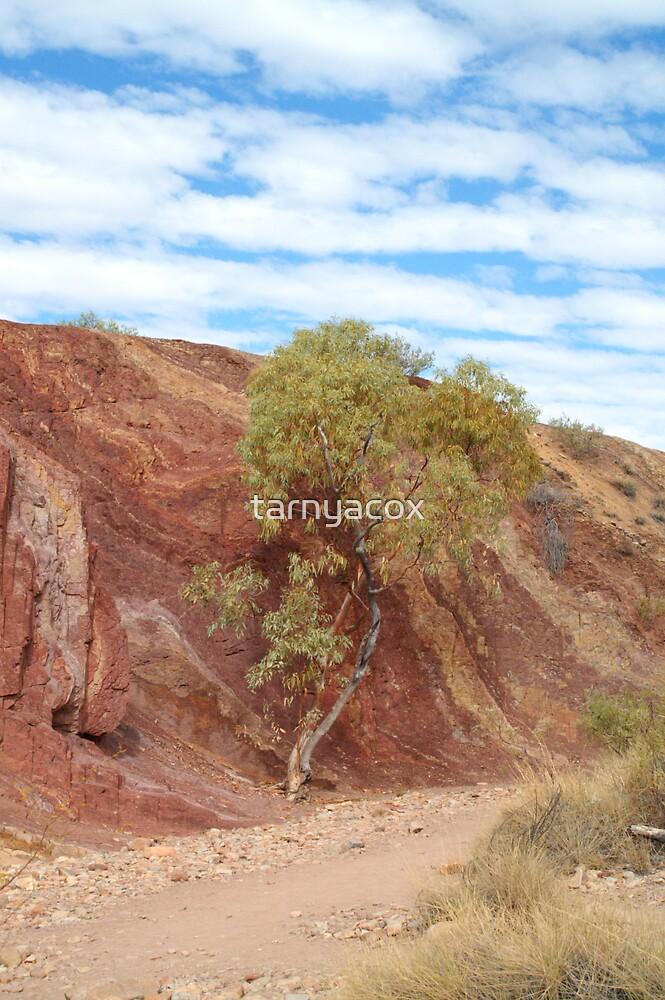 The Ochre Pits by tarnyacox