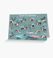 Know Your Reindeer Greeting Card